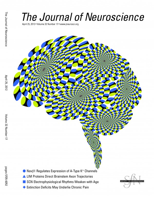Martinez-Conde Lab's research featured on the Cover of The Journal of Neuroscience